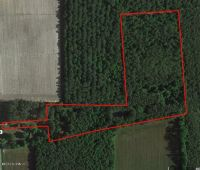 Home for sale: 8.45 Acres Robersonville Products Rd., Robersonville, NC 27871