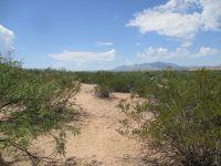 Home for sale: Desert Sage Rd., Fort Thomas, AZ 85533