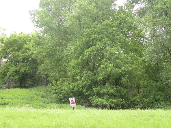 Lot 8 Combe St., Ripon, WI 54971 Photo 5