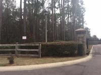 Home for sale: 9 Ryefield Ln., Ridgeville, SC 29472