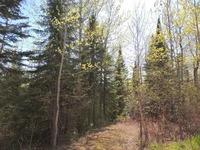 Home for sale: 13x County Rd. 48, Grand Marais, MN 55604