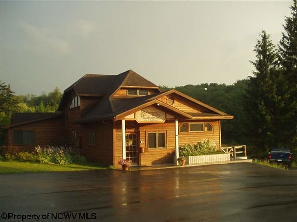 96 Frostline Ct., Davis, WV 26260 Photo 42