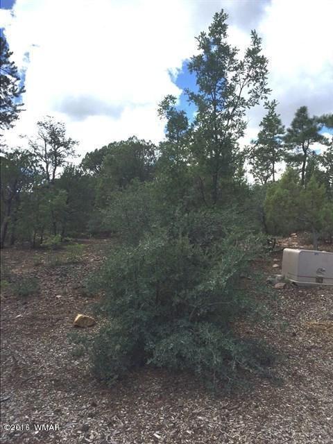 800 E. Pine Oaks Dr., Show Low, AZ 85901 Photo 3