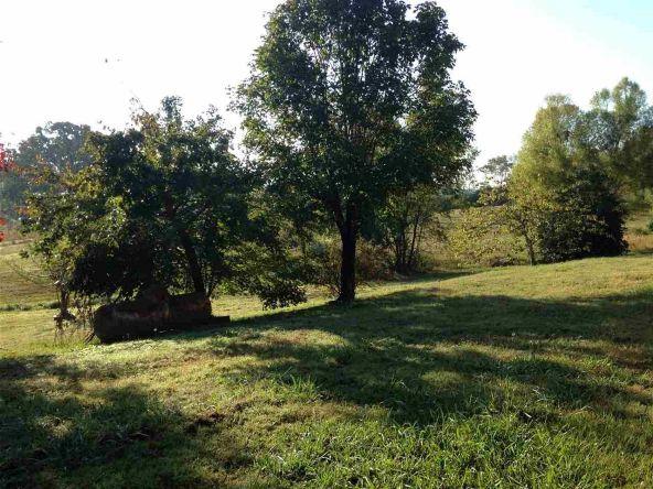 2595 Hwy. 270, Mount Ida, AR 71957 Photo 19