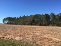 Home for sale: 0 Hwy. 22 & Cty Rd. 13, Headland, AL 36345