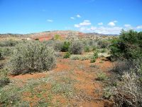Home for sale: San Ysidro Ln., San Ysidro, NM 87053