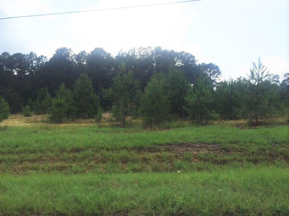 4 Ac Point A Rd. (Cr 59), Andalusia, AL 36421 Photo 3
