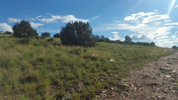 3620 W. Rd. Runner Dr., Chino Valley, AZ 86323 Photo 4