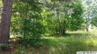 Home for sale: County Rd. 467, Cedar Bluff, AL 35959