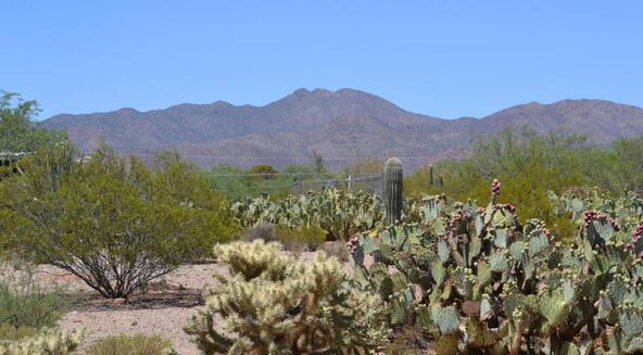 3162 S. Delfina, Tucson, AZ 85735 Photo 1