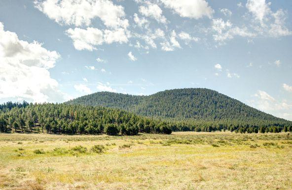 8670 W. Suzette Ln., Flagstaff, AZ 86001 Photo 27