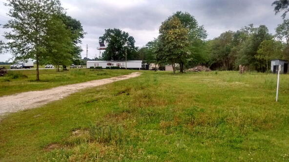 25957 Hwy. 59, Loxley, AL 36551 Photo 1
