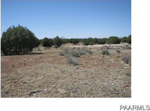 292 Sabrina, Ash Fork, AZ 86320 Photo 12