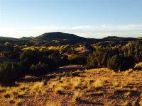 Home for sale: 41 Calle Milpa Lot #10, Santa Fe, NM 87507