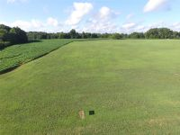 Home for sale: 7 Woodland Dr., Decherd, TN 37324