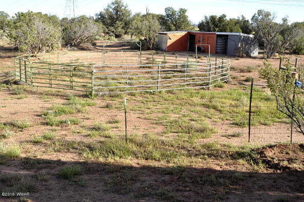 129 N. County Rd. 9190, Concho, AZ 85924 Photo 46