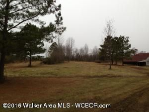 655 Airport, Haleyville, AL 35565 Photo 2