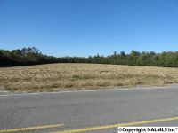 Home for sale: 1 County Rd. 60, Pisgah, AL 35765