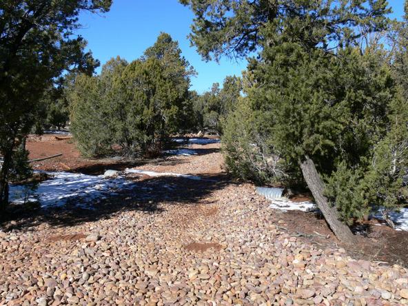 3557 Juniper Break Trail, Overgaard, AZ 85933 Photo 7