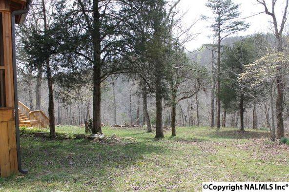 1020 County Rd. 628, Mentone, AL 35984 Photo 33