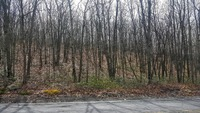 Home for sale: Lot #42 Salem Mountain Rd., Carbondale, PA 18407