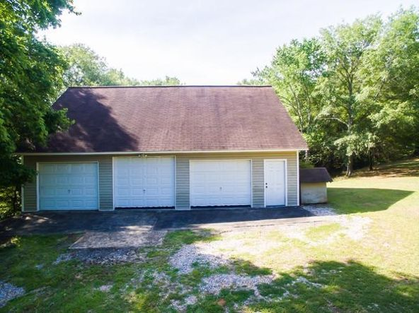 2280 Co Rd. 240, Wedowee, AL 36278 Photo 8