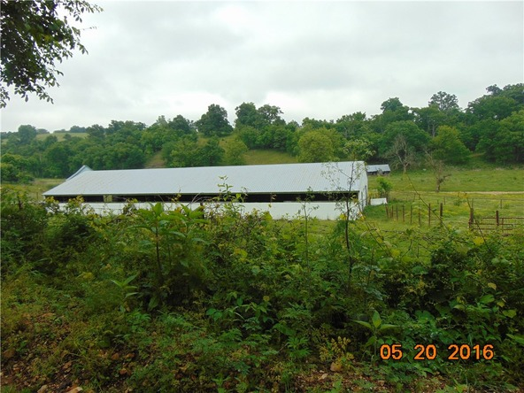 80 County Rd. 638, Green Forest, AR 72638 Photo 2