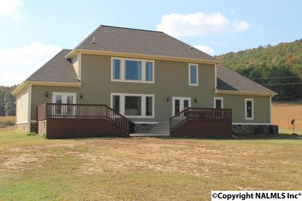 1234 County Rd. 622, Valley Head, AL 35989 Photo 48