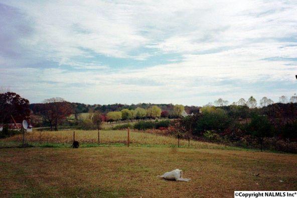 736 County Rd. 1815, Joppa, AL 35087 Photo 13