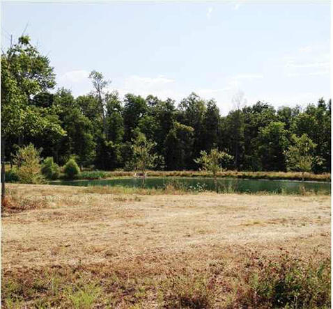 5791 Serenity Dr. Lot 14, Mount Vernon, IN 47620 Photo 25