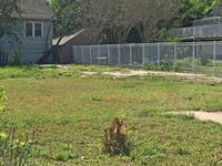 Home for sale: 433 Louisiana, Corpus Christi, TX 78404