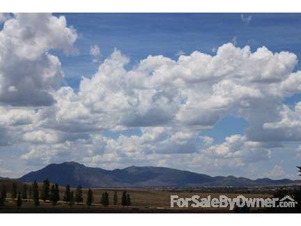 950 Nick Trail, Chino Valley, AZ 86323 Photo 8