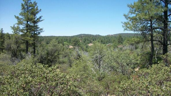 509 N. Chaparral Pines Dr., Payson, AZ 85541 Photo 9