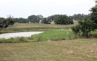 Home for sale: 4105 Stone Creek Cir., Kerrville, TX 78028