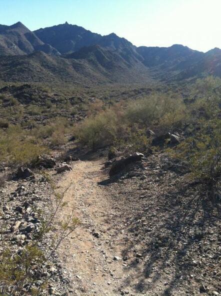 9350 S. Krista Dr. W., Goodyear, AZ 85338 Photo 28
