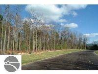 Home for sale: 3750 Winter Leaf Dr., Traverse City, MI 49686