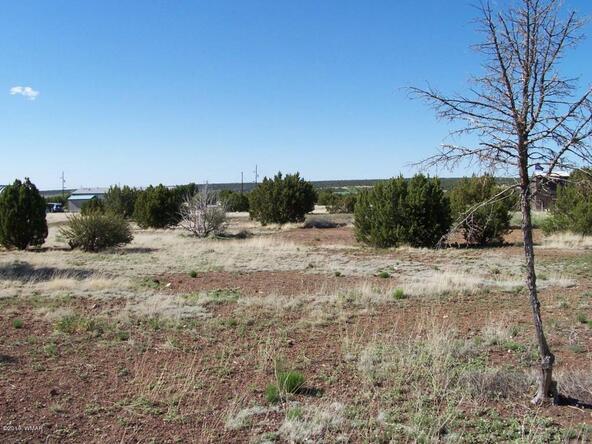 8482 Basalt Pl., White Mountain Lake, AZ 85912 Photo 11