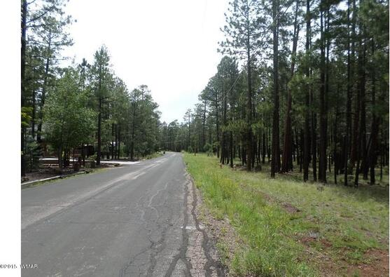 7828 Buck Springs Rd., Pinetop, AZ 85935 Photo 4