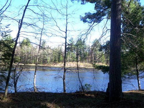 Lot 4 Eagles Ridge, Eagle River, WI 54521 Photo 8