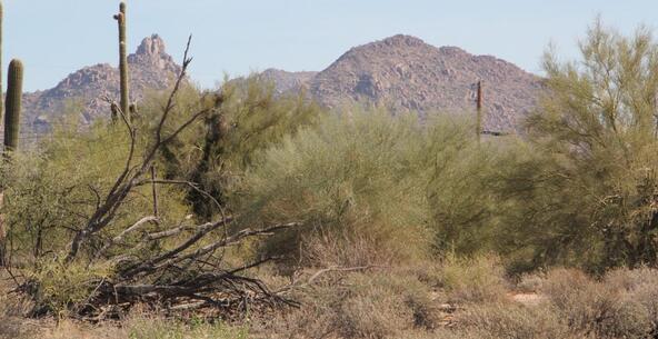 7512 Dynamite Blvd., Scottsdale, AZ 85266 Photo 3