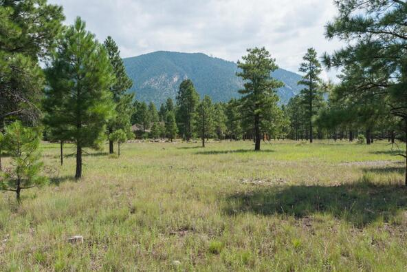 8r Lockett Ranches, Flagstaff, AZ 86001 Photo 10