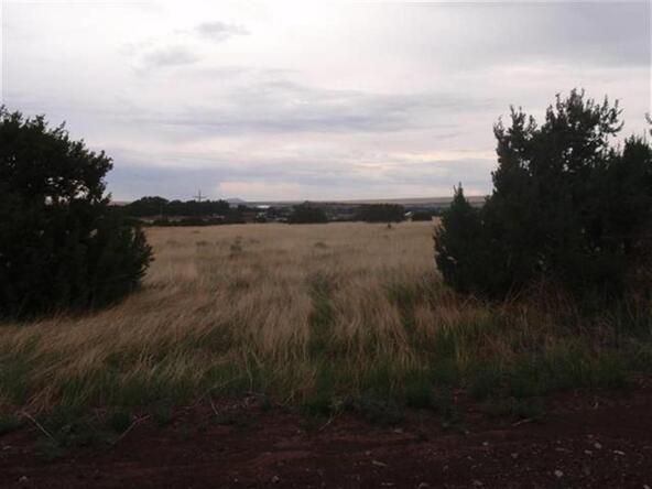 440 E. Grassy Dr., Eagar, AZ 85925 Photo 1