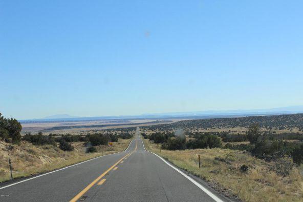 7209 N. Hwy. 191 --, Sanders, AZ 86512 Photo 1