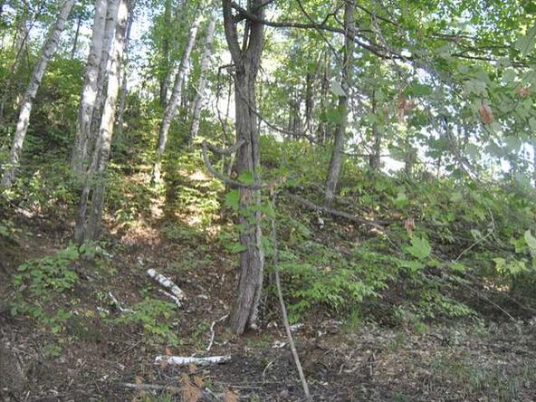Lot 12 Sunset Dr., Tomahawk, WI 54487 Photo 21