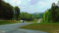Home for sale: 526 Red Bush School Rd., Blue Ridge, GA 30513
