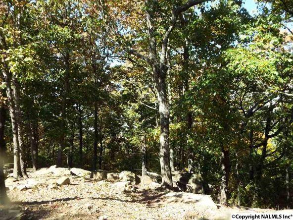 15 S. County Rd. 89, Mentone, AL 35984 Photo 3