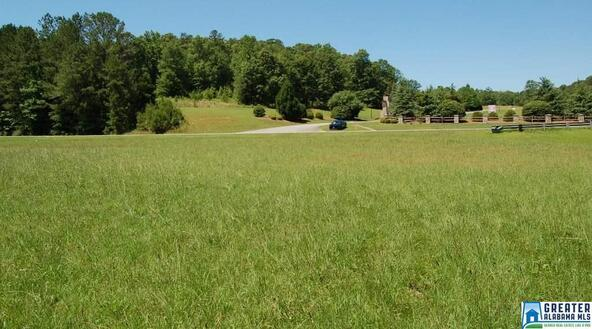 1.5 Acres Hwy. 431, Wedowee, AL 36278 Photo 7
