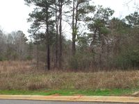 Home for sale: Lot 4 County Rd. 553, Valley, AL 36854