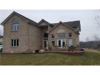 Home for sale: 22137 Otter Rd., Belleville, MI 48164