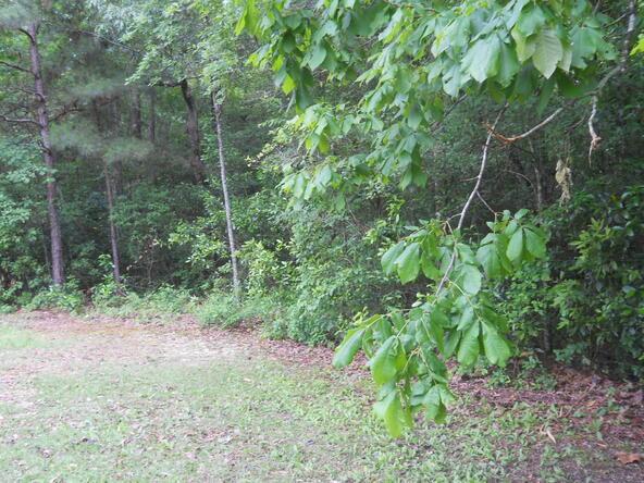 1 Hudson Rd., Whiteville, NC 28472 Photo 5